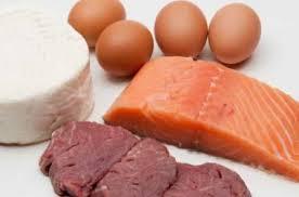 aliments riches en taurine
